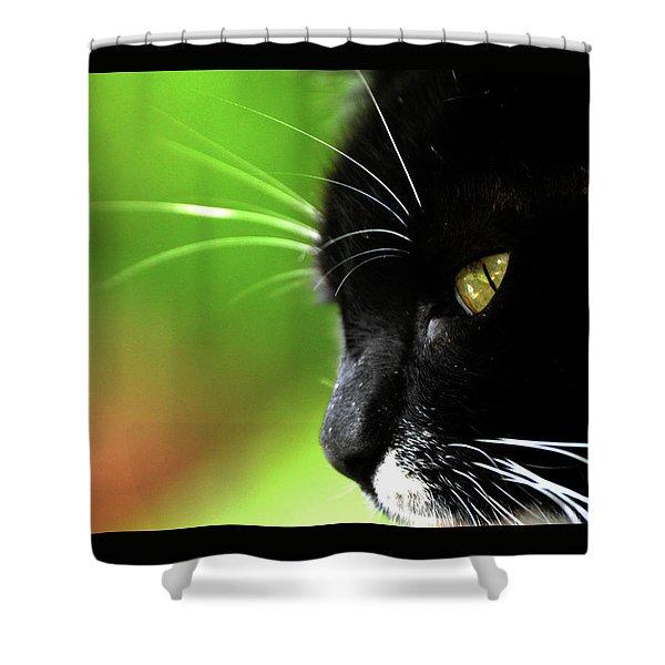 Kitkat Profile By Lesa Fine Shower Curtain