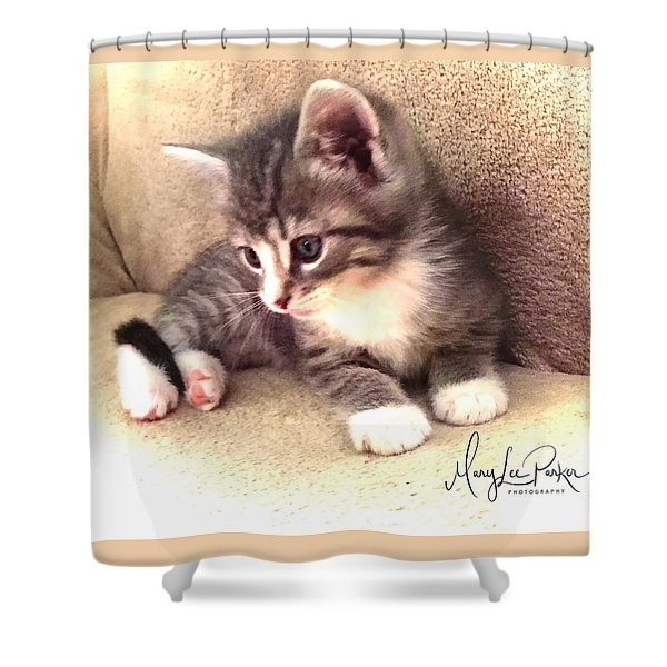 Kitten Deep In Thought Shower Curtain