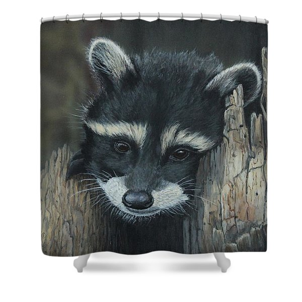 Kit...the Baby Raccoon Shower Curtain