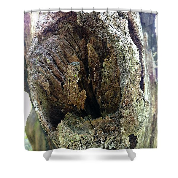 Knot Me Shower Curtain