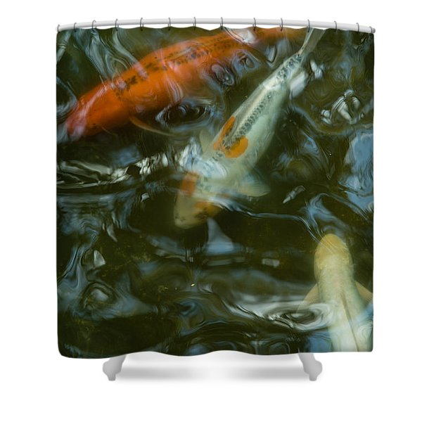 Shower Curtain featuring the photograph Koi IIi by Break The Silhouette