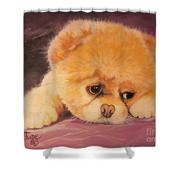 Flying Lamb Productions     Koty The Puppy Shower Curtain