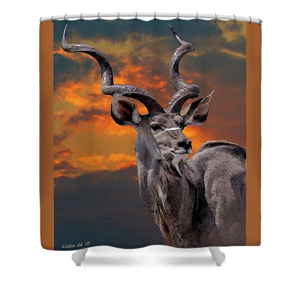 Kudu At Sunset Shower Curtain