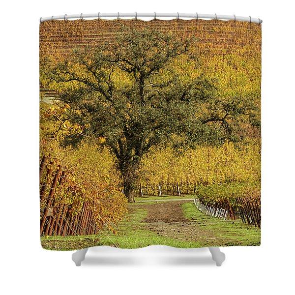 Kunde Vineyards Shower Curtain