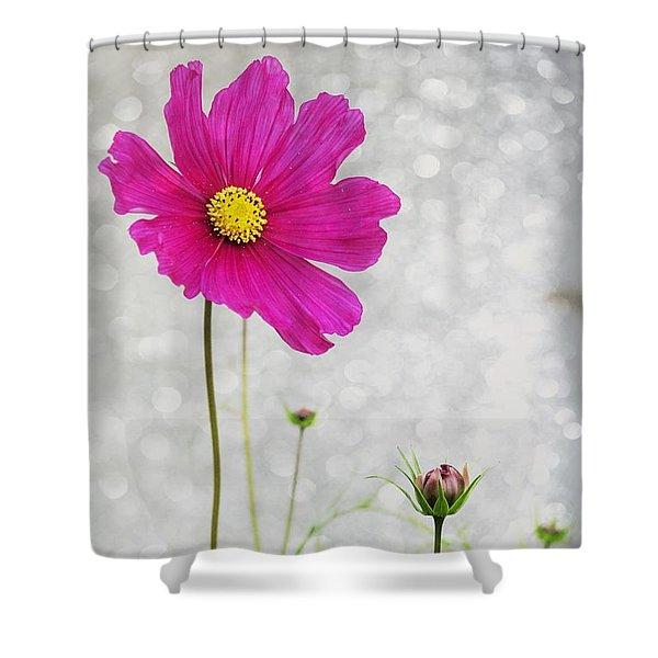 L Elancee Shower Curtain