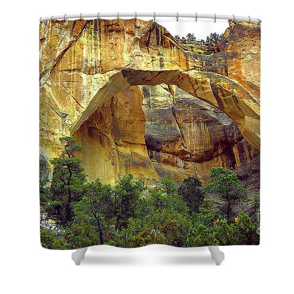 La Ventana Natural Arch Shower Curtain