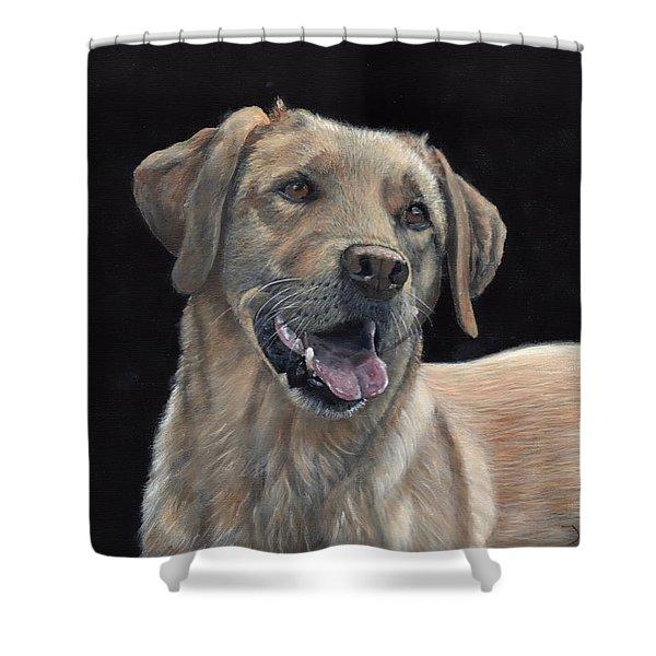 Labrador Portrait Shower Curtain
