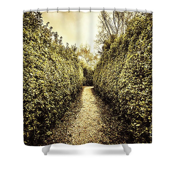 Labyrinth Lane Shower Curtain