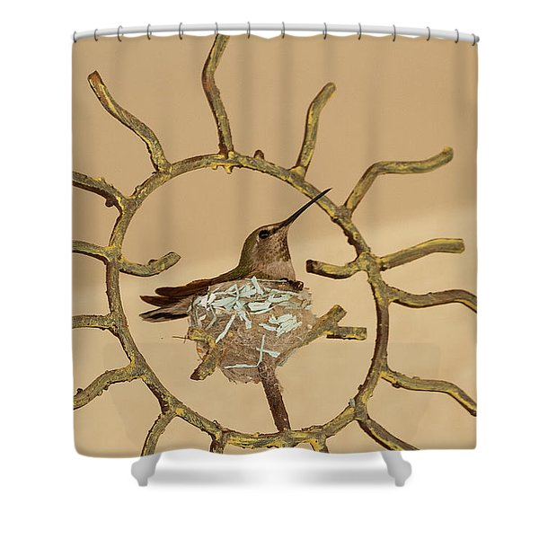 Lady Hummingbird On Her Nest Shower Curtain