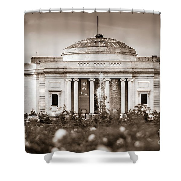 Lady Lever Art Gallery Shower Curtain