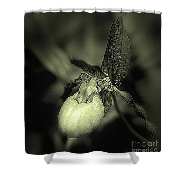 Lady Slipper Orchid Flower Shower Curtain