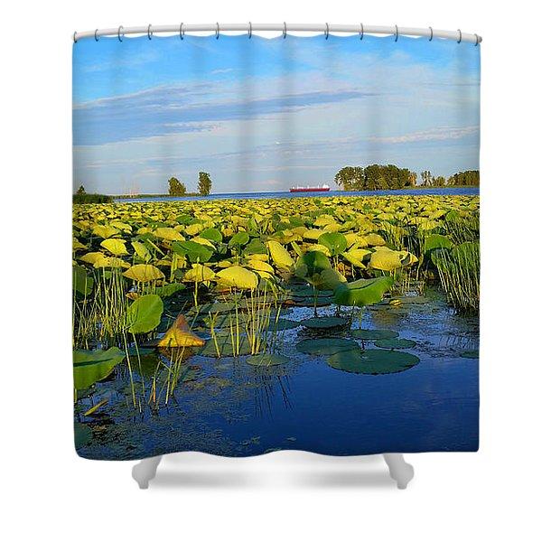 Pointe Mouilee Lake Erie Shower Curtain