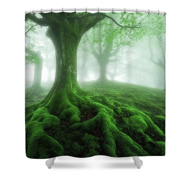 Land Of Roots Shower Curtain