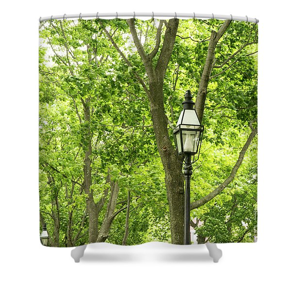 Lanterns Among The Trees Shower Curtain