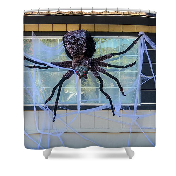 Large Scary Spider  Shower Curtain