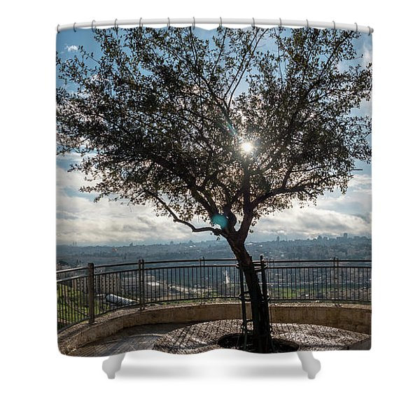 Large Tree Overlooking The City Of Jerusalem Shower Curtain