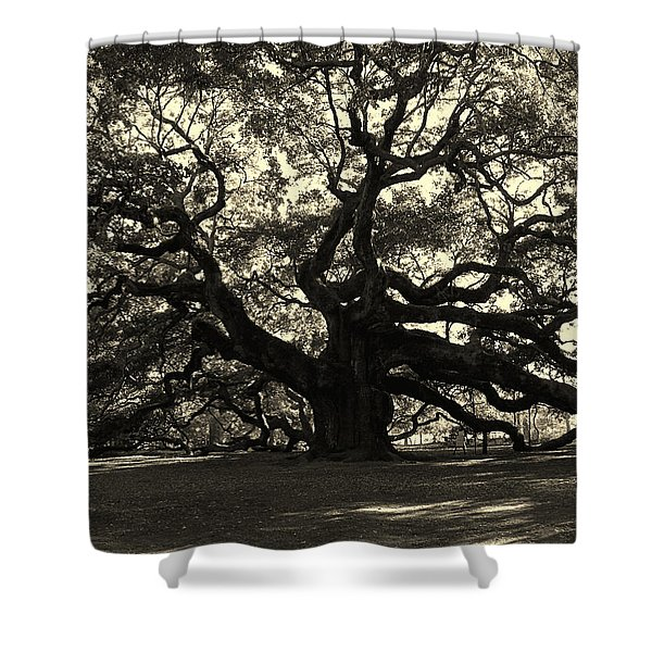 Last Angel Oak 72 Shower Curtain