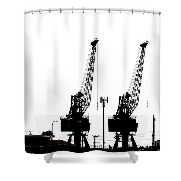 Last To The Ark Shower Curtain