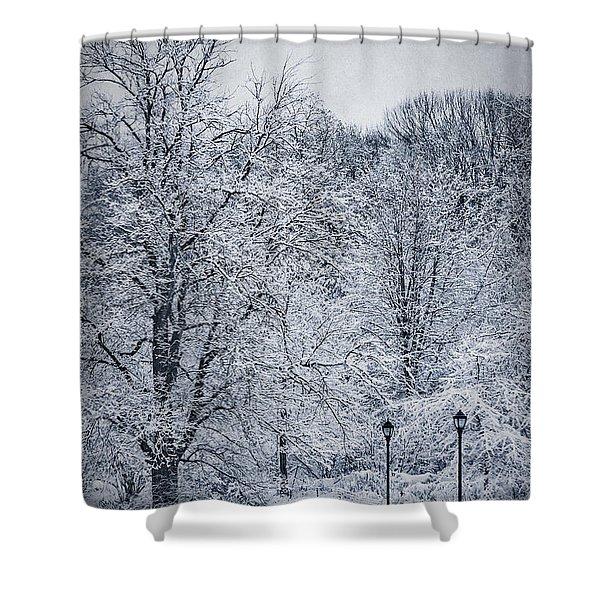 Last Winter's Dream Shower Curtain