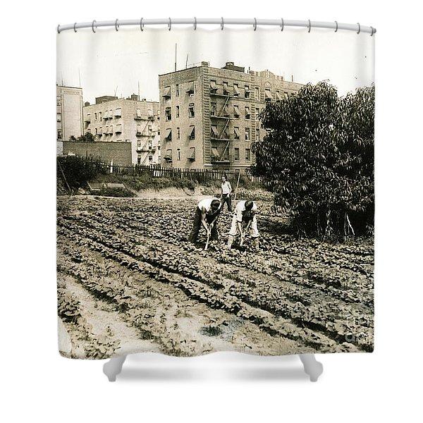 Last Working Farm In Manhattan Shower Curtain