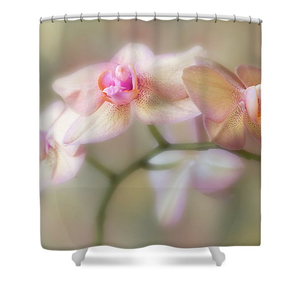 Lasting Forever. Shower Curtain