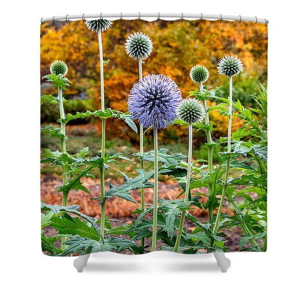 Late Bloom Among Fall Colors Shower Curtain