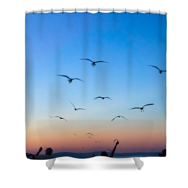 Laughing Gulls In The Evening Sky Shower Curtain