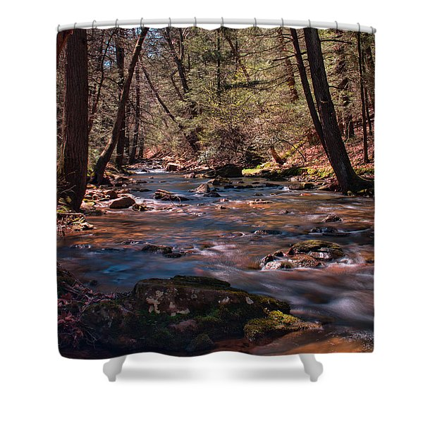 Laurel Run - Tuscarora State Forest Shower Curtain
