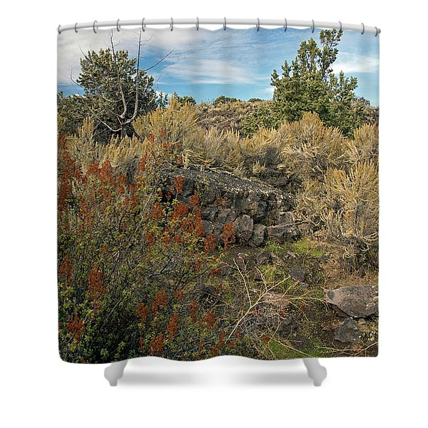 Lava Formations Shower Curtain