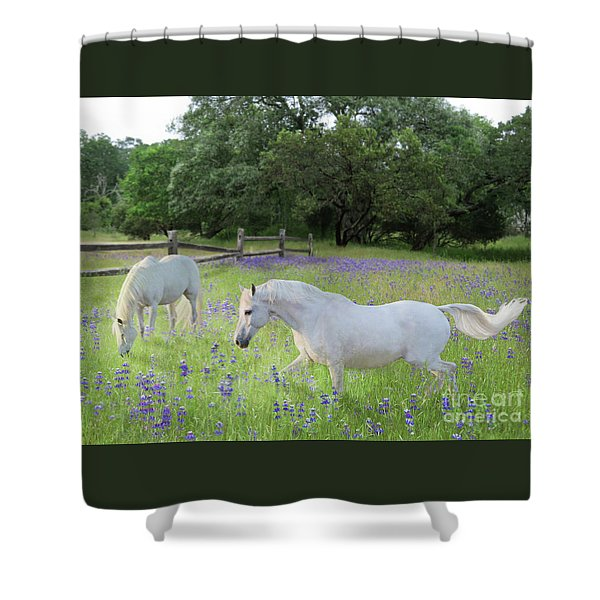 Shower Curtain featuring the digital art Lavender Pastures by Melinda Hughes-Berland
