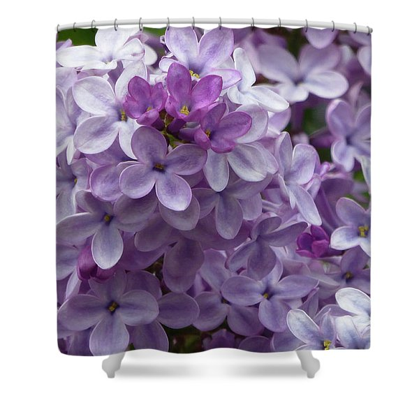 Shower Curtain featuring the photograph Lavender Lilacs by Cris Fulton