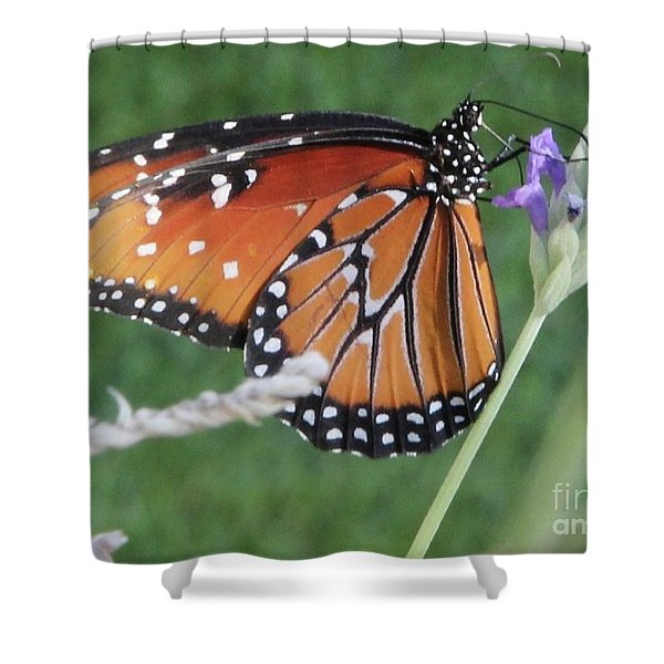 Lavender Lunch Shower Curtain