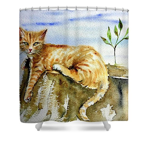 Lazy Evening Shower Curtain