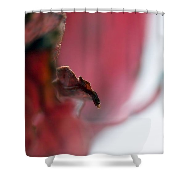 Leaf Abstract II Shower Curtain