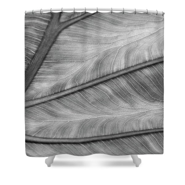 Leaf Abstraction Shower Curtain