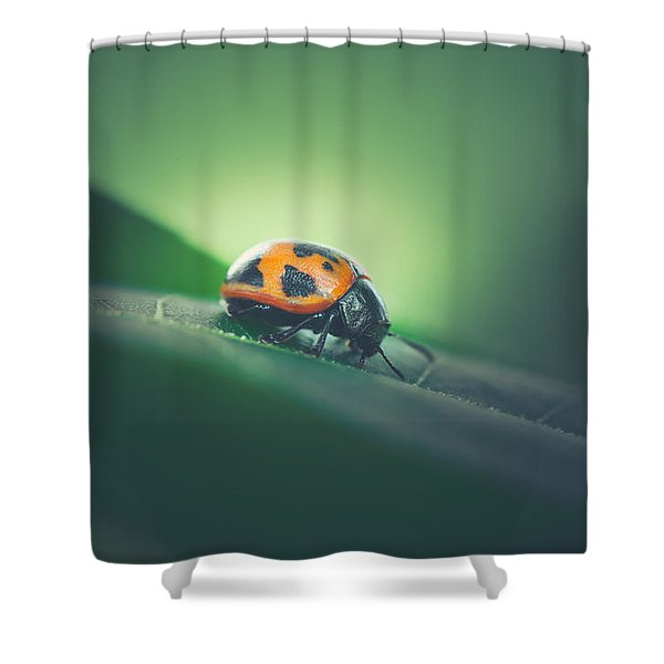 Leaf Surfer Shower Curtain