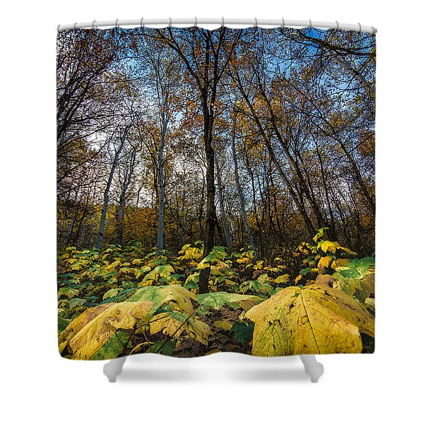 Leafy Yellow Forest Carpet Shower Curtain