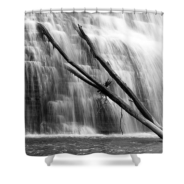 Leaning Falls Shower Curtain