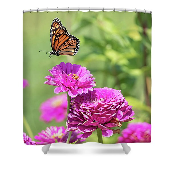 Leaping Butterfly Shower Curtain