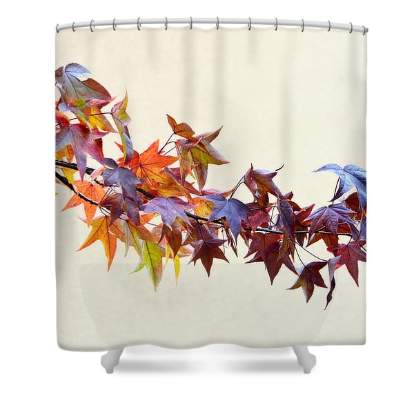 Leaves Of Many Colors Shower Curtain
