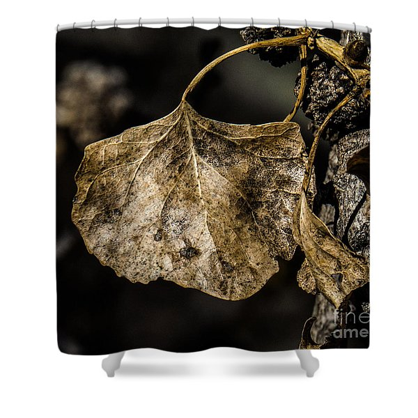 Leaves 4 Shower Curtain