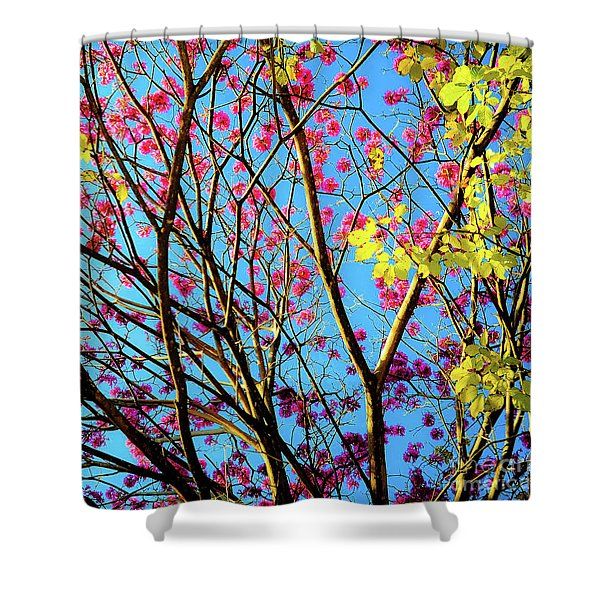 Leaves And Trees 980 Shower Curtain
