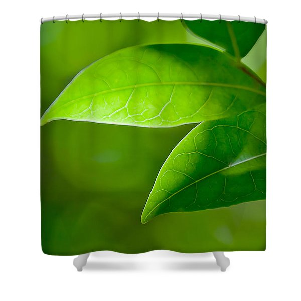 Leaves Of Green Shower Curtain
