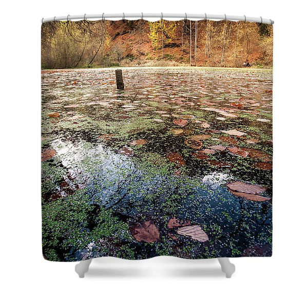 Leaves On The Lake Shower Curtain