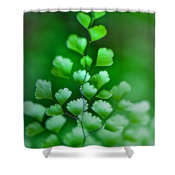 Leaves Rising Shower Curtain
