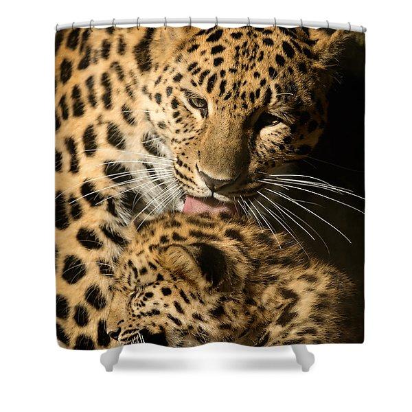 Leopard Cub Love Shower Curtain