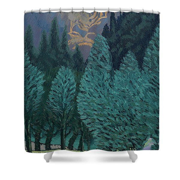 Les Alycamps And The Starry Night Shower Curtain