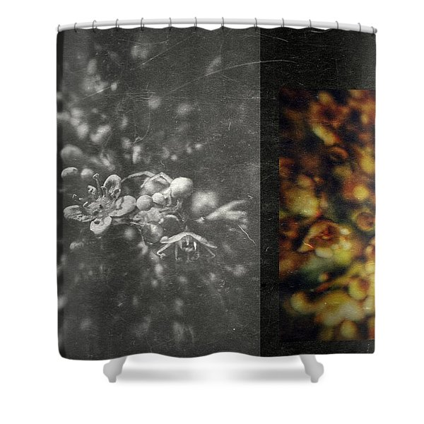 Let The Wind Go Shower Curtain