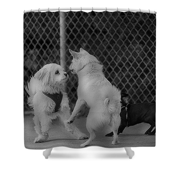 Lets Dance Shower Curtain