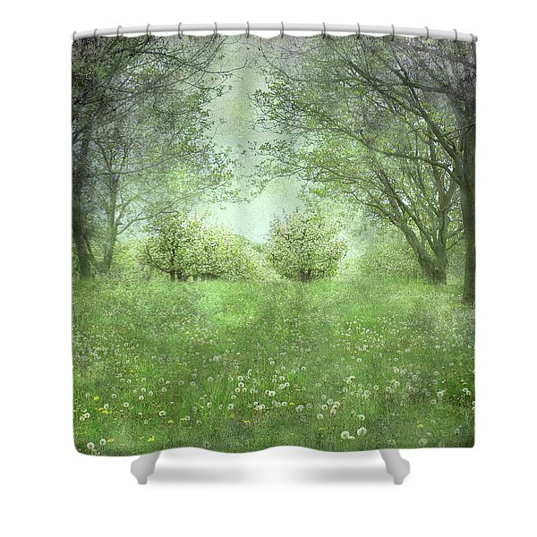 Let's Wed Here Shower Curtain
